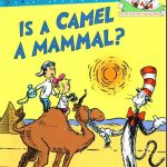 Is Camel a Mammal