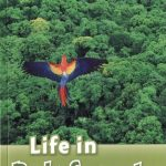 Life in Rainforests