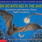 How Do Bats See in the Dark