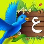 بطاقات Arabic letters